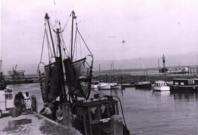 Visvangst met Kotter
