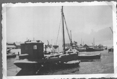 Visserskotter in de haven van Doel