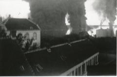 Brand van de Schelde (2): Burchtse daken