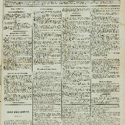 De Klok van het Land van Waes 07/07/1895
