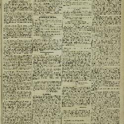 Gazette van Lokeren 29/01/1882