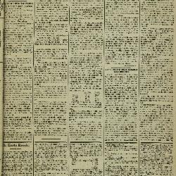 Gazette van Lokeren 29/06/1884