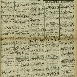 Gazette van Lokeren 06/04/1902