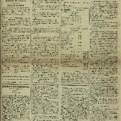 Gazette van Lokeren 19/01/1873