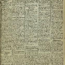 Gazette van Lokeren 11/11/1883