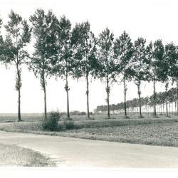 Van Oudendijk (De Paepe Geb.) naar Molenstraat (De Caluwé H.)