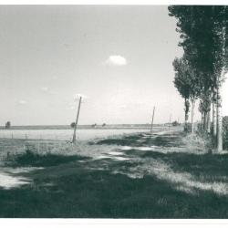 Kruispunt Molenstraat - St.Annalaan - richting Liefkenshoek