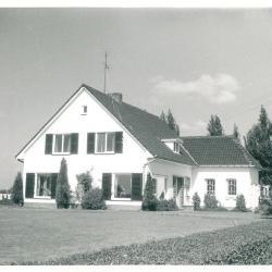 Tuinbouwbedrijf familie Roger Martens - Oude Dijk