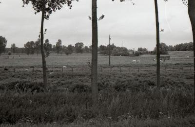 Lange Gaanweg 1990-2012 7