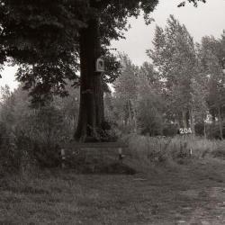 Lange Gaanweg 1990-2012 5