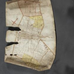 Uittreksel uit ongekend kaartboek van de regio Beveren
