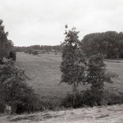 Scheldedijk Kruibeke 1990-2012 5