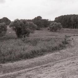 Scheldedijk Kruibeke 1990-2012 3