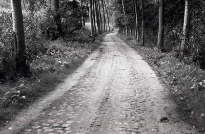 Zandweg Bazel 1990-2012 2