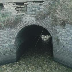 Omwalling en wal Fort Liefkenshoek