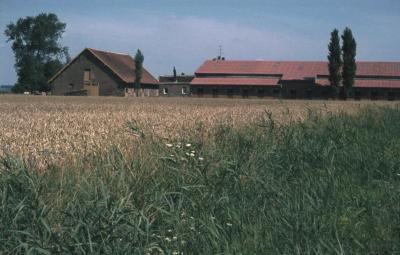 St. Annahoeve van Arthur Bogaert - Molenstraat